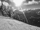 Skiing the Trails at Lake Louise by Ryan Davison Crisp