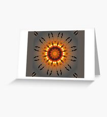 Grass sunset Greeting Card