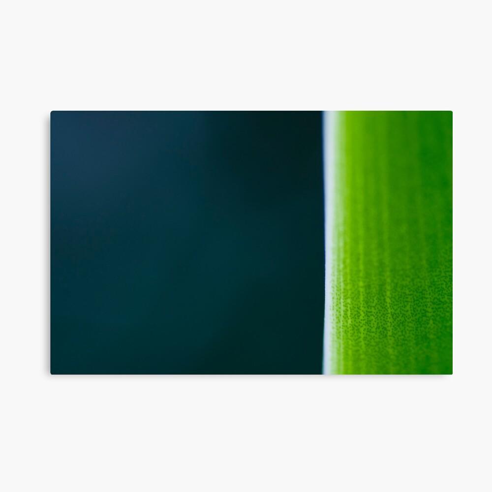 Banana Leaf Leinwanddruck