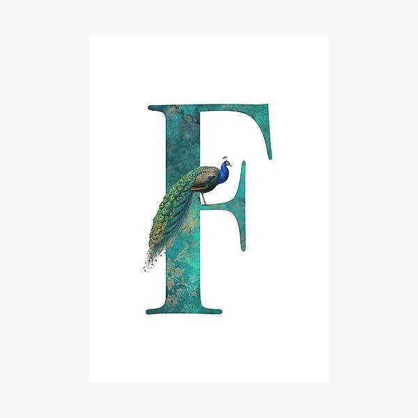 Peacock Monogram Letter F Photographic Print