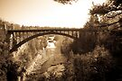 Arch Bridge over Ausable Chasm in Sepia by ValeriesGallery