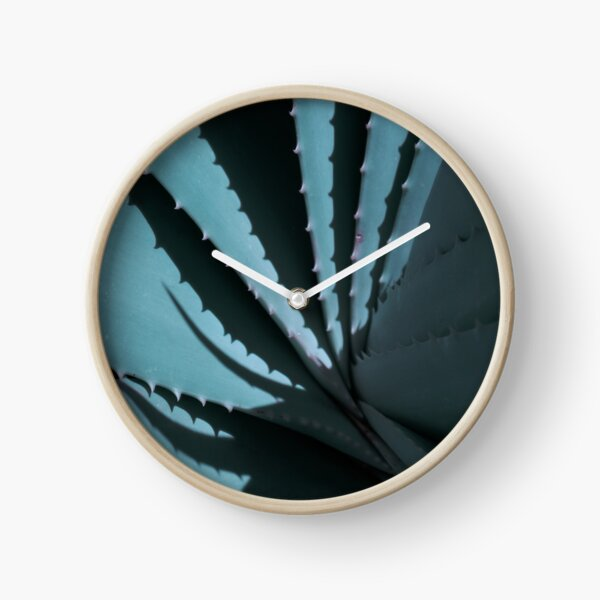 Aloe 02 Uhr