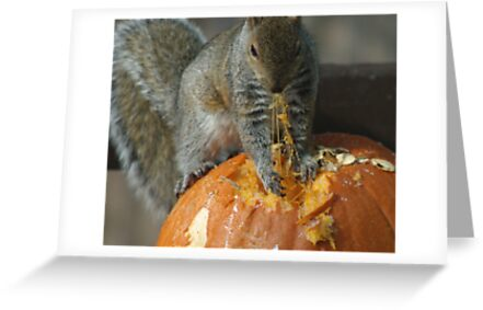 Pumpkin on the Menu by Barry Doherty