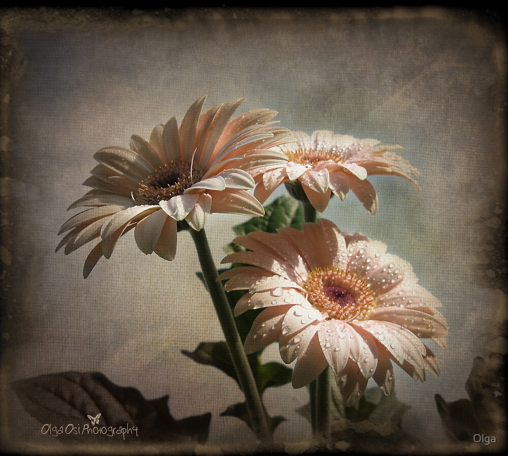 Dramatic floral by Olga