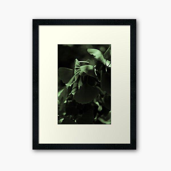 Ginko 02 Gerahmter Kunstdruck