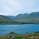 killary fjord.. by Michelle McMahon