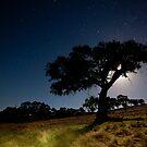 Rural Moonlitscape by Michael Selge