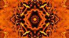 An Orange Managerie by xzendor7